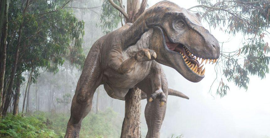 Pourquoi les dinosaures ont-il disparu